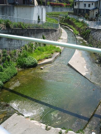 塩屋川2.jpg